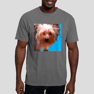 angus2 Mens Comfort Colors Shirt