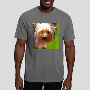 angus1 Mens Comfort Colors Shirt