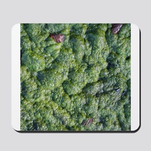 Picture of Slime. Mousepad
