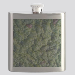 Picture of Slime. Flask