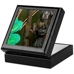 Monkey With Shamrock Keepsake Box