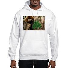 Red Ruffed Lemur Eating Shamrock Hooded Sweatshirt