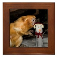 Golden Lion Tamarin With Snowman Framed Tile