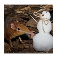 Elephant Shrew with Snowman Tile Coaster