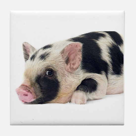 Micro pig chilling out Tile Coaster