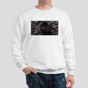 Little Brown Bat Sweatshirt