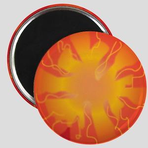 Tomato Slice Magnet