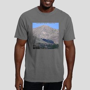 SBspring22sqL Mens Comfort Colors Shirt