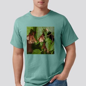 seeds Mens Comfort Colors Shirt