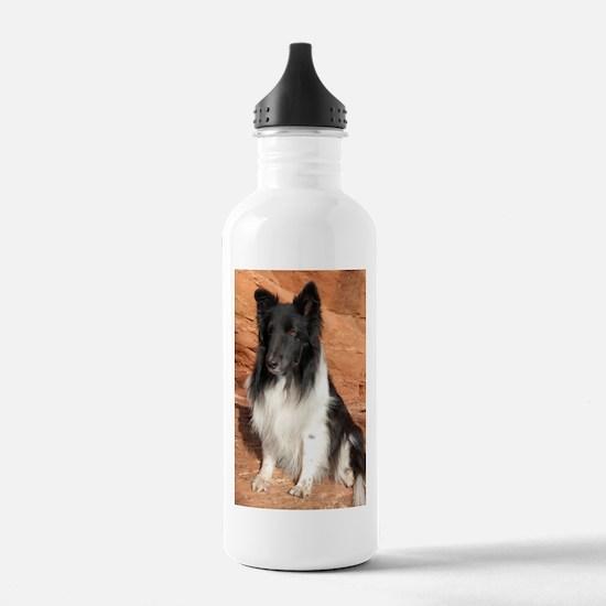 BLack and White Sheltie Water Bottle