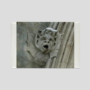 Salisbury Cathedral Gargoyle Rectangle Magnet