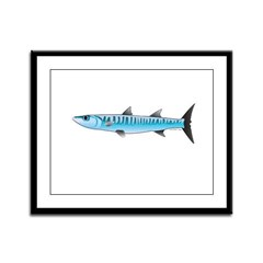 Pacific Barracuda fish Framed Panel Print