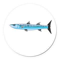 Pacific Barracuda fish Round Car Magnet