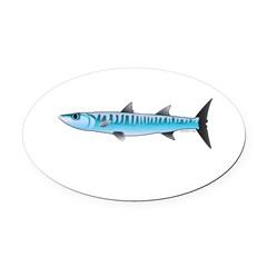 Pacific Barracuda fish Oval Car Magnet