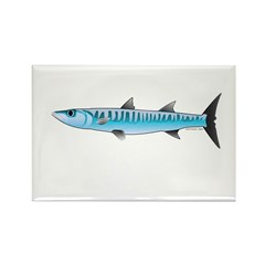 Pacific Barracuda fish Rectangle Magnet