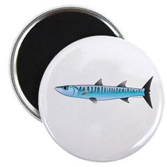 """Pacific Barracuda fish 2.25"""" Magnet (10 pack)"""