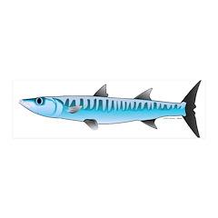 Pacific Barracuda fish Wall Decal