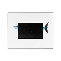 Pacific Barracuda fish Picture Frame