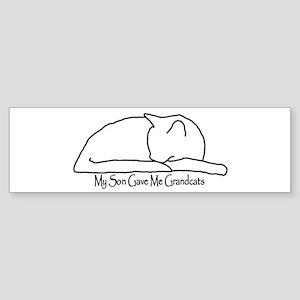 My Son Gave Me Grandcats Sticker (Bumper)