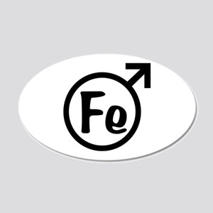 Fe Man 20x12 Oval Wall Decal