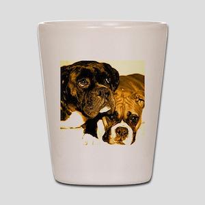 Boxer Dog Friends Shot Glass