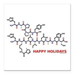 molecularshirts.com Happy Holidays Square Car Magn