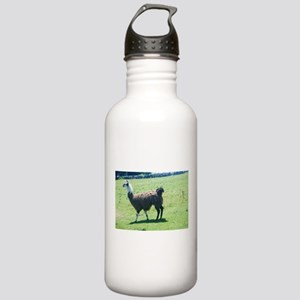 Lama in the pasture Stainless Water Bottle 1.0L