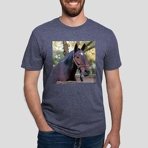 horse11B Mens Tri-blend T-Shirt