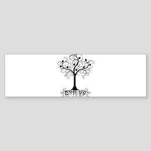 Hebrew Tree of Life Bumper Sticker