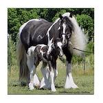 Gypsy Foal Series - Tile Coaster #7