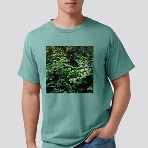 b5900064 Mens Comfort Colors Shirt