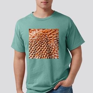 c0018206 Mens Comfort Colors Shirt