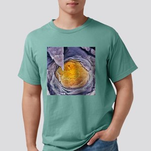 c0018226 Mens Comfort Colors Shirt