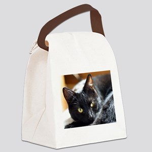 Sleek Black Cat Canvas Lunch Bag