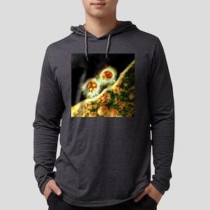 c0070734 Mens Hooded Shirt