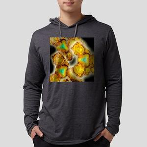 c0023671 Mens Hooded Shirt