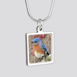 Eastern Bluebird Silver Square Necklace