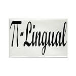 Pi Lingual Funny Math Rectangle Magnet (10 pack)