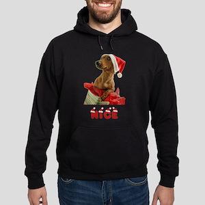 Nice Dachshund Hoodie (dark)
