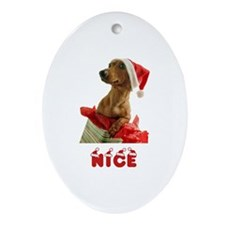 Nice Dachshund Ornament (Oval)