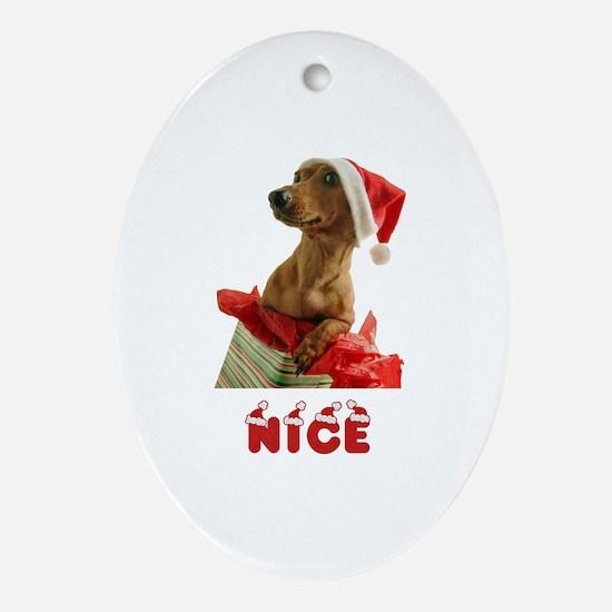 Nice Dachshund Ornament (Oval)