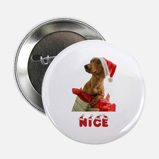 "Nice Dachshund 2.25"" Button"