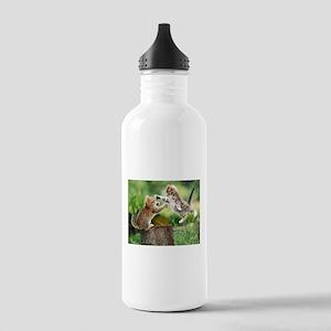 Ninja Kittens Stainless Water Bottle 1.0L