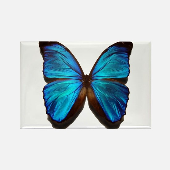 blue butterfly two Rectangle Magnet