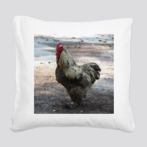 Chicken Square Canvas Pillow