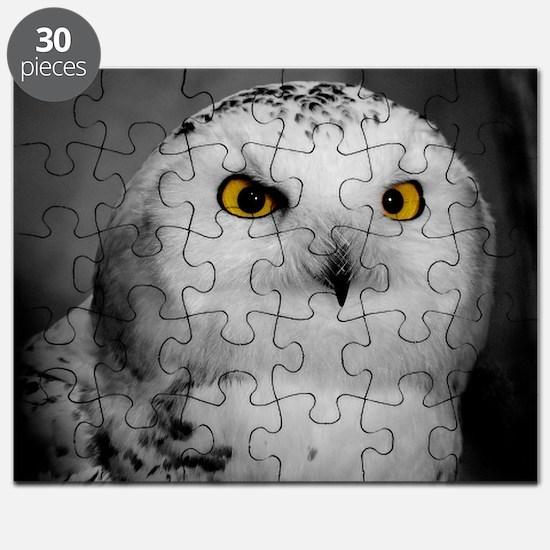 Cute Snowy owl Puzzle