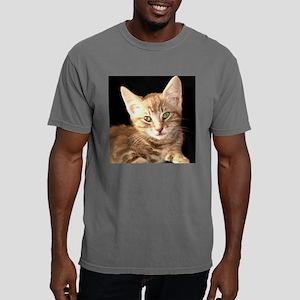 Barney for tile Mens Comfort Colors Shirt