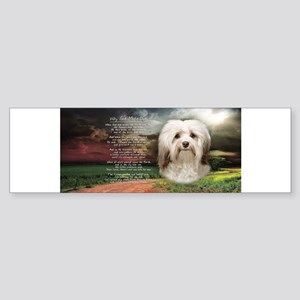 Why God Made Dogs - Havanese Sticker (Bumper)