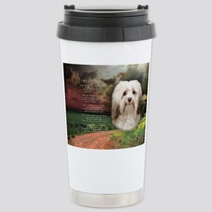 Why God Made Dogs - Havanese Stainless Steel Trave