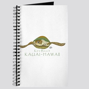 Sea Turtle Journal